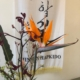 Blumen zur bestandene Kampfkunst Prüfung in Hamburg