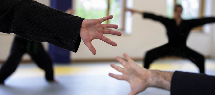 Kampfkunst St Pauli
